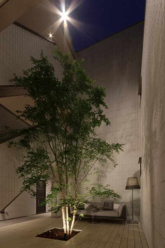 住居者共有のウッドデッキスペースはエントランスからご自宅までの動線上に配置されています。シンボルツリーは紅葉で四季を感じ、自然光が気持ちのよい憩いの空間です